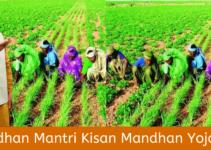 प्रधानमंत्री किसान मानधन योजना क्या है? पूरी जानकारी हिंदी में।